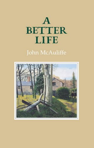 A Better Life - John McAuliffe (ebook)