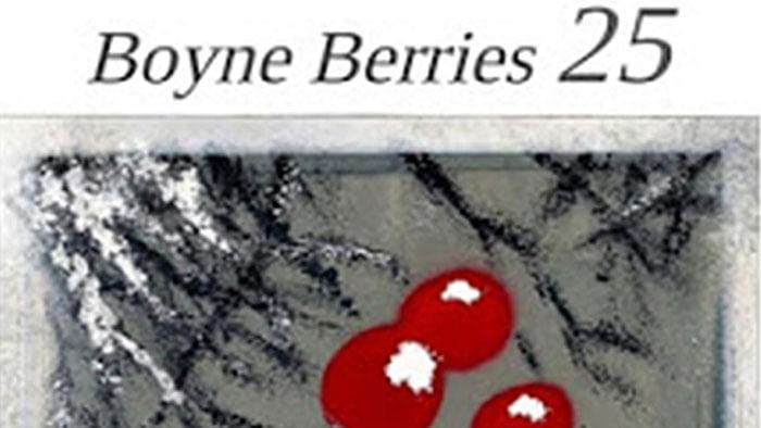 Boyne Berries 25 Launch: Trim Poetry Festival – 15 March