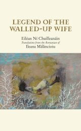 Legend of the Walled-up Wife - Eiléan Ní Chuilleanáin