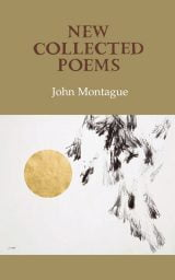 New Collected Poems - John Montague