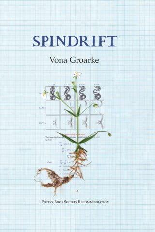 Spindrift - Vona Groarke