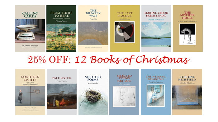 12 Books of Christmas Special Offer: 25% OFF
