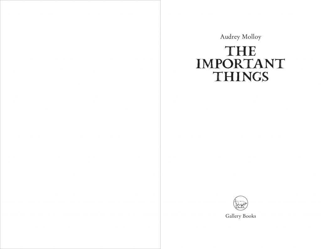 The Important Things Preview