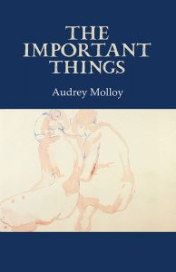 The Important Things Audrey Molloy