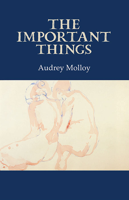 The Important Things - Audry Molloy