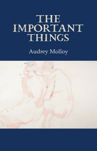 Cover: The Important Things by Audrey Molloy