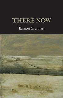 There Now- Eamon Grennan