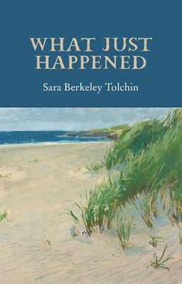 What Just Happened - Sara Berkeley Tolchin
