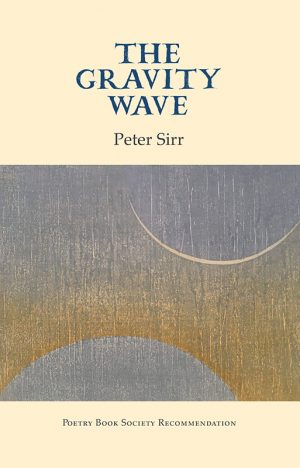 The Gravity Wave by Peter Sirr